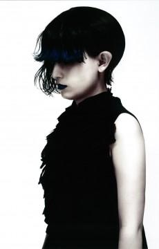 2013 Japan Hairdressing Awards<br /> 最終ノミネート作品